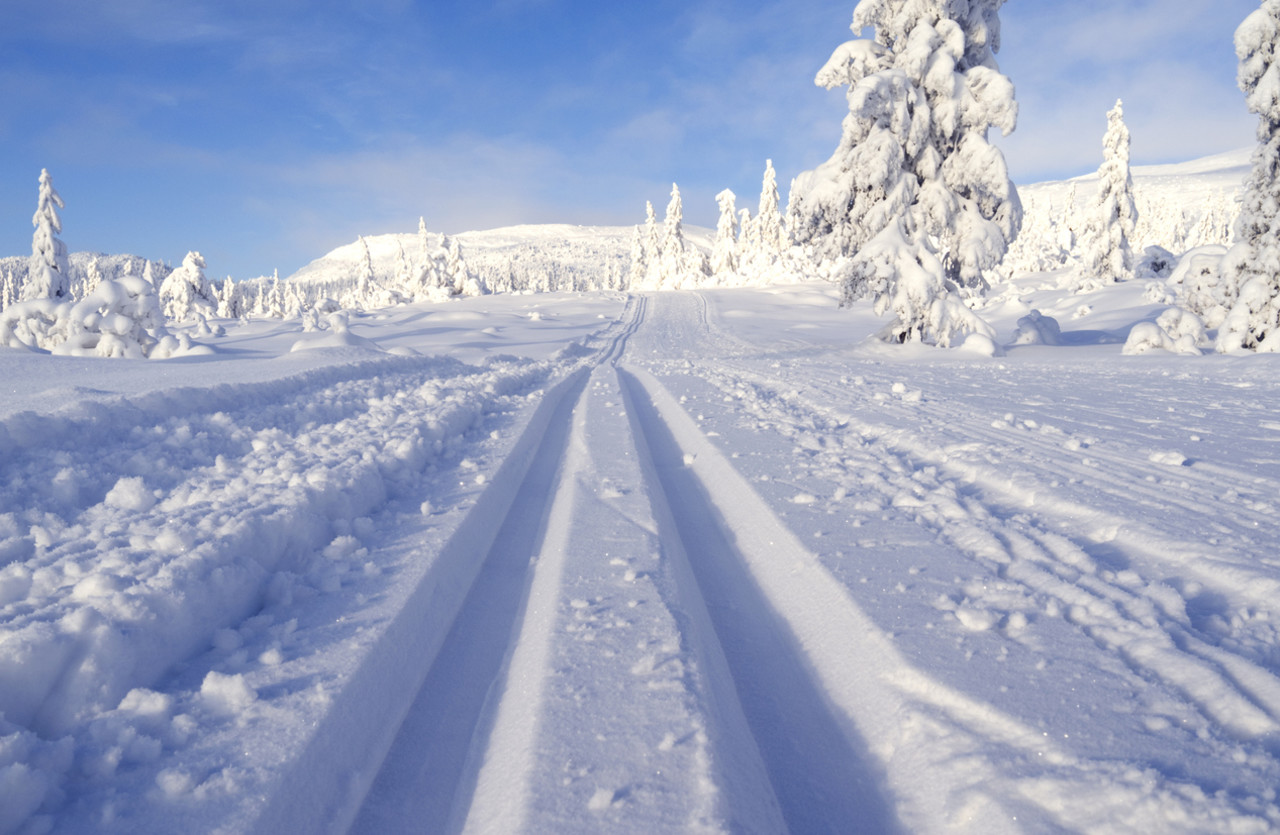 Norway dreamlike cross country ski trail